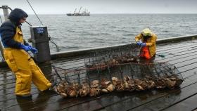 Las autoridades escocesas plantean que el Brexit perjudica la exportación pesquera