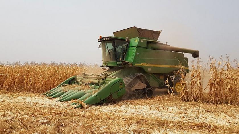 El trabajo de un argentino en África enseñando a cosechar el maíz