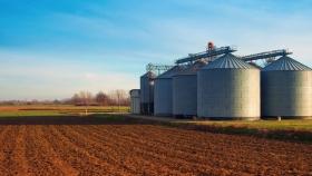 Campaña 2020/21: la industrialización de la soja alcanza cifras récord