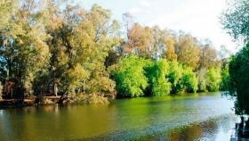 Docente de la UFLO será el curador del primer Jardín Botánico del Alto Valle