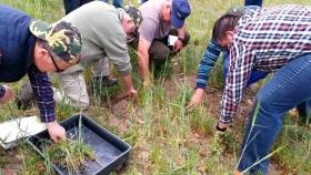 Una crónica sobre la agricultura regenerativa en España donde los jóvenes están contagiando a los viejos agricultores
