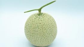 Melón Yubari, una rebanada de esta fruta se puede vender en 16 mil pesos
