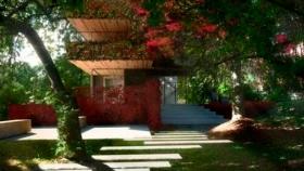 Ideas para decorar patios traseros
