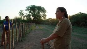 Del Valle Carrizo aseguró que los movimientos sociales, campesinos e indígenas son claves en la recuperación post pandemia