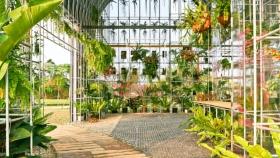 Invernadero como hogar / BIAS Architects