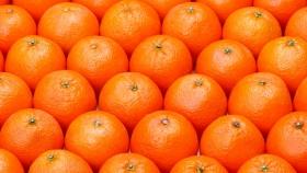 Naranjas : El 38,3% del precio son impuestos