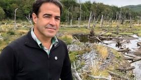 Por Internet, personas y empresas compran bosques argentinos para frenar el cambio climático