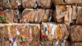 La bioindustria con la economía circular