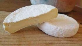 Fijan pautas para la producción de lácteos de manera artesanal