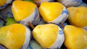 Aumentó la exportación de pera y manzana a Rusia en el primer trimestre del 2020