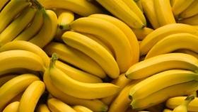 Formosa: sector bananero en problemas