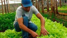Destacan la recuperación de la visión estratégica de la agricultura familiar y campesina