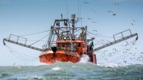 La industria pesquera sorprende y espera un 2021 a puro dólar