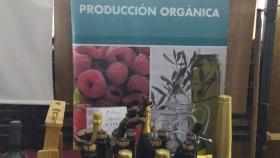 La superficie argentina bajo producción orgánica alcanzó un récord histórico de 4,4 millones de hectáreas