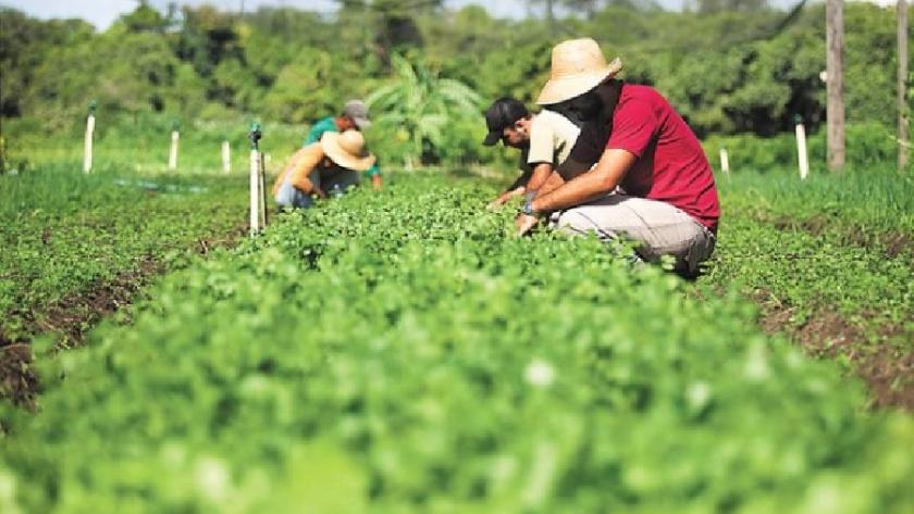 Inauguraron una nueva colonia agroecológica en Tapalque