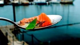 El salmón noruego considerado el más sostenible entre los productores de proteínas del mundo