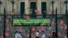 Se entregaron medio millón de firmas a diputados para impulsar la Ley de Humedales