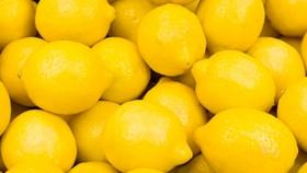 Las exportaciones de frutas frescas crecieron un 6 por ciento