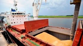 Exportaciones agrícolas: cayó la liquidación de divisas en enero