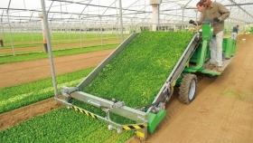 Hortech: tecnología al servicio de la horticultura