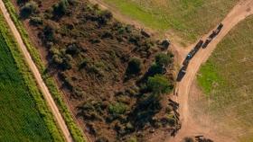 Los principales frentes de deforestación global se concentran en el Gran Chaco