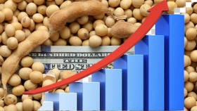 Mercado de Chicago: suben la soja y el trigo, baja el maíz