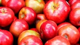 El precio de la manzana: en octubre, los consumidores pagaron 13 veces más de lo que cobró el productor