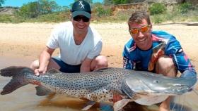 Corrientes: capturan un surubí de 60 kilos y lo devuelven al Paraná