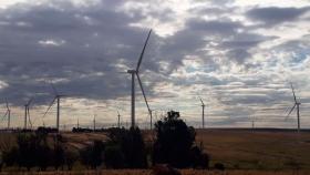 Inauguran un nuevo parque eólico