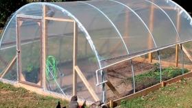 Paso a paso: cómo hacer un invernadero casero y cultivar