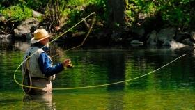 Claves de la pesca con mosca