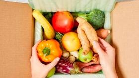 Expertos ven presión mundial creciente por alimentos seguros y por equilibrio entre producción y ambiente