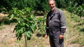 Higos de la Patagonia: frutos raros, ricos y delicados