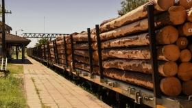El campo elige al ferrocarril público para mover sus mercaderías