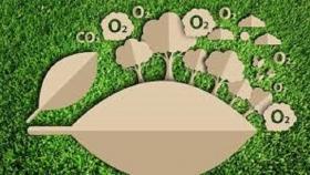 Huella de Carbono: el proyecto provincial que busca controlar y reducir la contaminación en Misiones