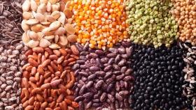 Las semillas que ayudan a mejorar la salud