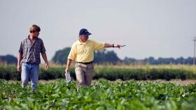Comienza a regir la moratoria de AFIP con importantes descuentos para productores y contratistas