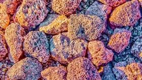 Piedra pómez para tus plantas: cómo aprovechar sus beneficios
