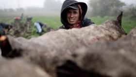 La vida en el campo de los agricultores costarricenses