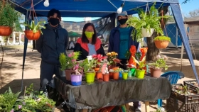 Agroecología, una alternativa de producción sustentable que crece en tiempos de pandemia