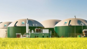 Energía renovable: biogás con residuos semilleros