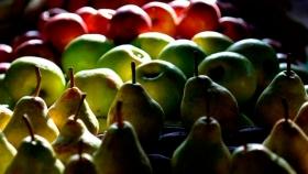 Las exportaciones argentinas de peras crecieron 9,3% en los primeros siete meses del 2020