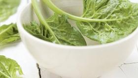 Temporada de acelga, la verdura con más hierro y vitaminas del calendario