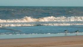Argentina podría perder hasta 100 metros de playa en los próximos 30 años debido al cambio climático
