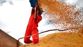 El agro liquidó US$ 2,3 mil millones en junio: 20,5% más que en mayo