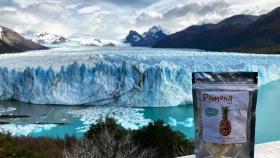Pomona Foods: combatiendo el desperdicio de alimentos a través de la liofilización