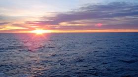 Mar Argentino: uno de los últimos grandes ecosistemas marinos del mundo