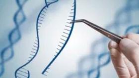 La edición genómica abre el camino a alimentos más sanos