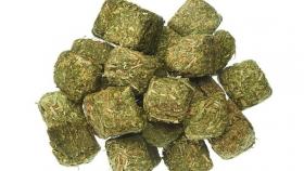 Caramelos de alfalfa, un invento chileno producido en San Juan