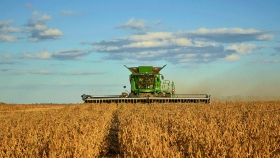 Biocombustibles: productores analizan aceptar un recorte en el porcentaje obligatorio de mezcla